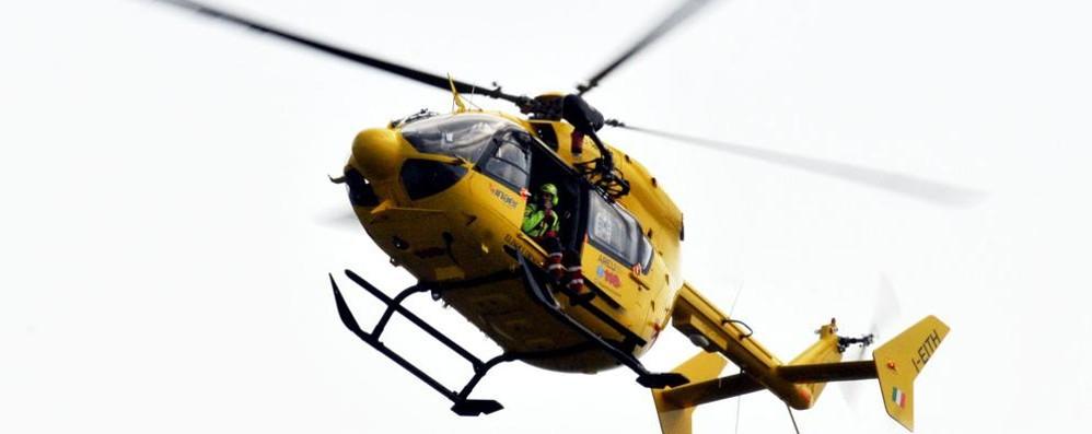 Arosio, travolto dalla pianta  In elicottero all'ospedale di Varese