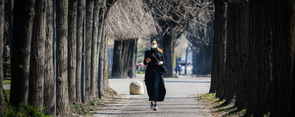 Auto ferme, l'aria mai così pulita Precipitano i valori degli inquinanti