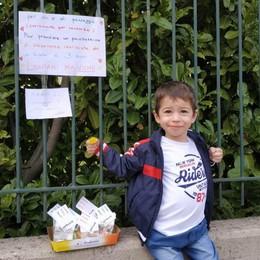 Coronavirus: Fino  Saponette di speranza  Le realizza il piccolo Mirko