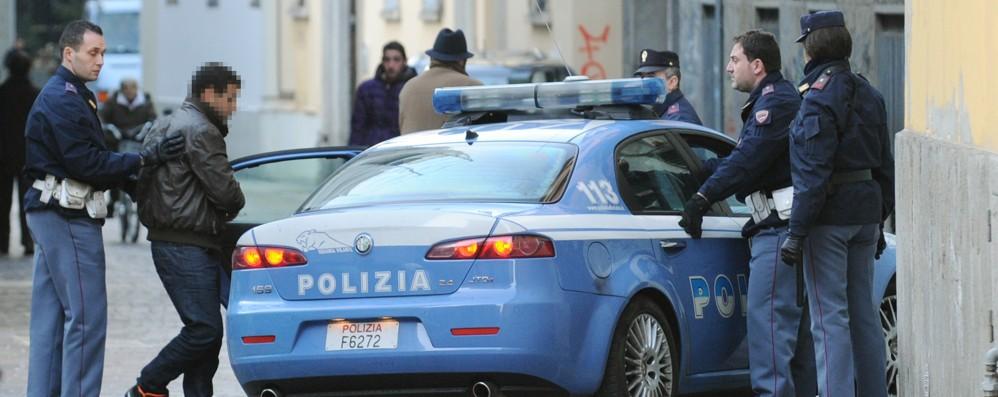Ragazzi rapinati di cellulare e cane  Due giovani arrestati dalla polizia