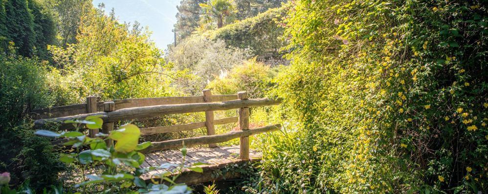 Cernobbio, il Giardino della Valle  si prepara a riaprire