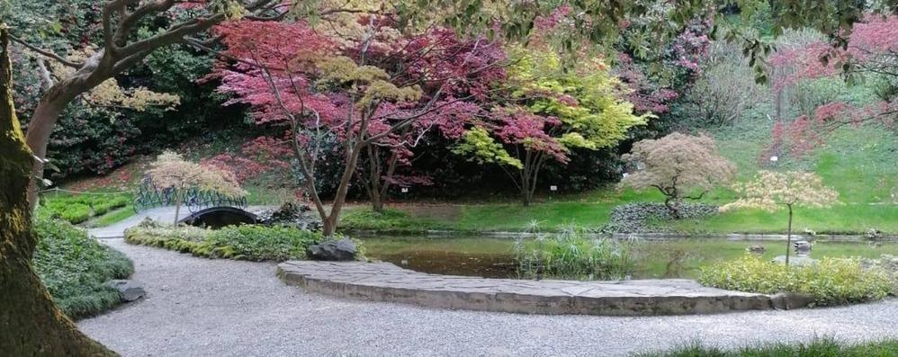 Villa Melzi aperta. Ma ai bellagini  «Giusto che si godano il giardino»