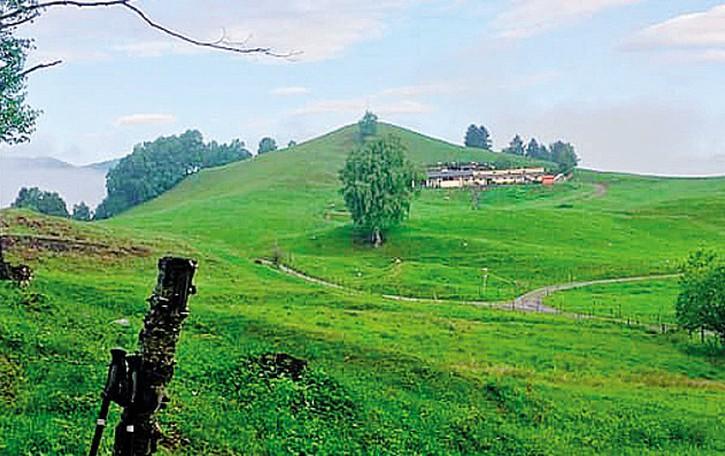 Tragedia nei prati all'Alpe Lissiga  Pensionato stroncato da un malore