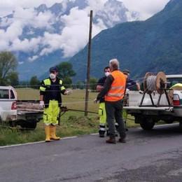 Rimossa la recinzione sul rettilineo  «Automobilisti, ora attenti ai cervi»