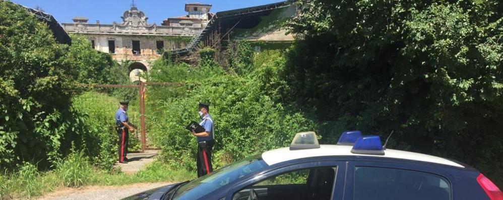 Coltiva marijuana in villa Porro  Denunciato giovane di Fino