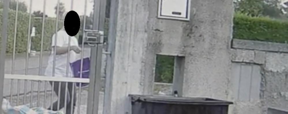 Getta nei rifiuti coppia di gattini  Ma non sa che c'è la telecamera