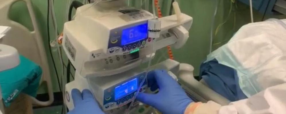 Coronavirus nel Comasco  485 morti in due mesi