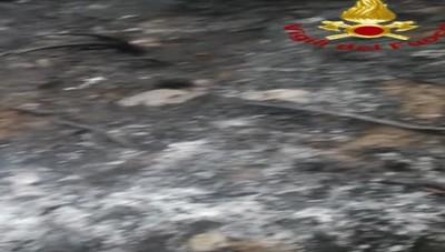 Moltrasio incendio rovi