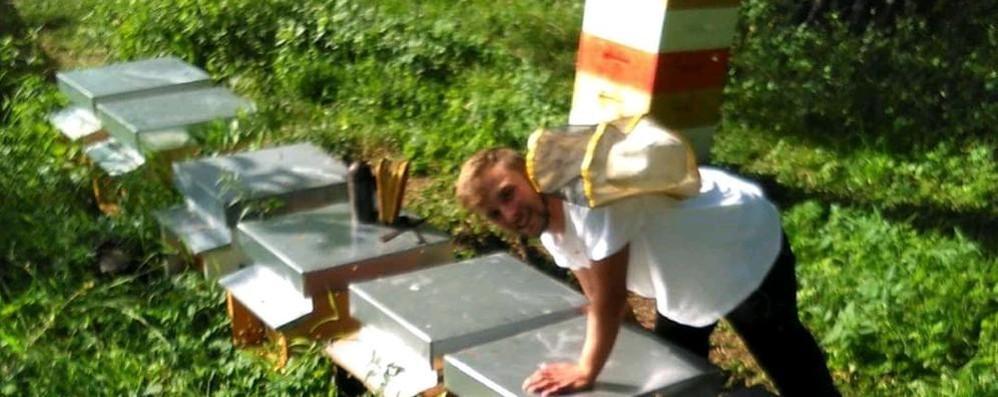 Como, tre amici e la natura  Dai banchi di scuola  all'impresa delle api