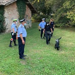Erba, i cani antidroga al parco Majnoni  Il sindaco: «Voglio anche le foto trappole»