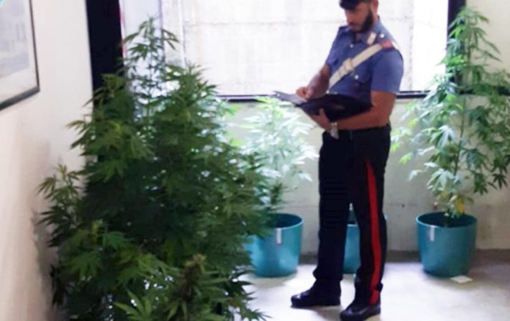 Spaccio e resistenza Un arresto a Locate