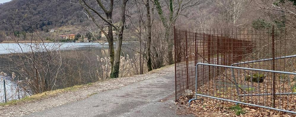 Il sentiero intorno al Segrino chiuderà  Martedì il via ai lavori per sistemarlo