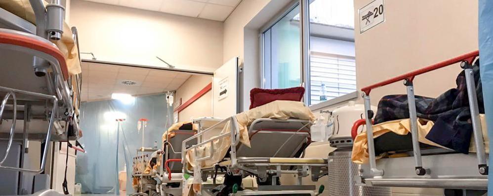 Tasso di mortalità  A Como è il doppio  di quello mondiale