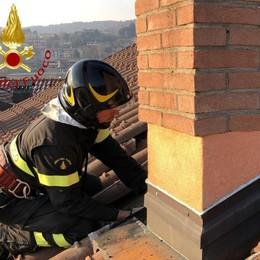 Canna fumaria in fiamme  Vigili del fuoco a Cavallasca
