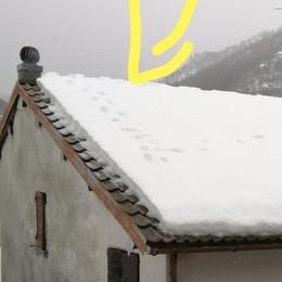 Misteriose impronte sui tetti  Scatta l'allarme a Val Rezzo