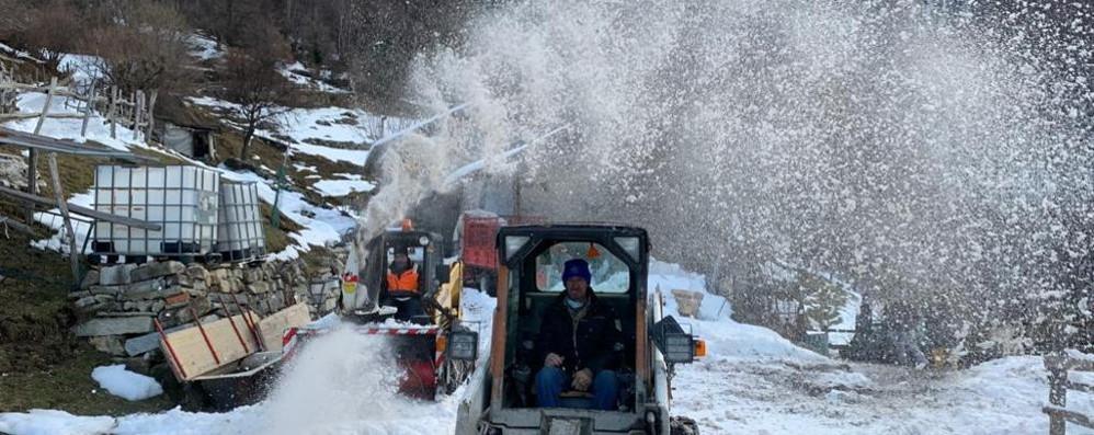 """Nesso, via la neve per 4 chilometri  Gli amici """"salvano"""" le mucche"""