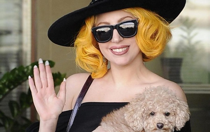 Hollywood sbarca a Tremezzina  In cento per il film con Lady Gaga