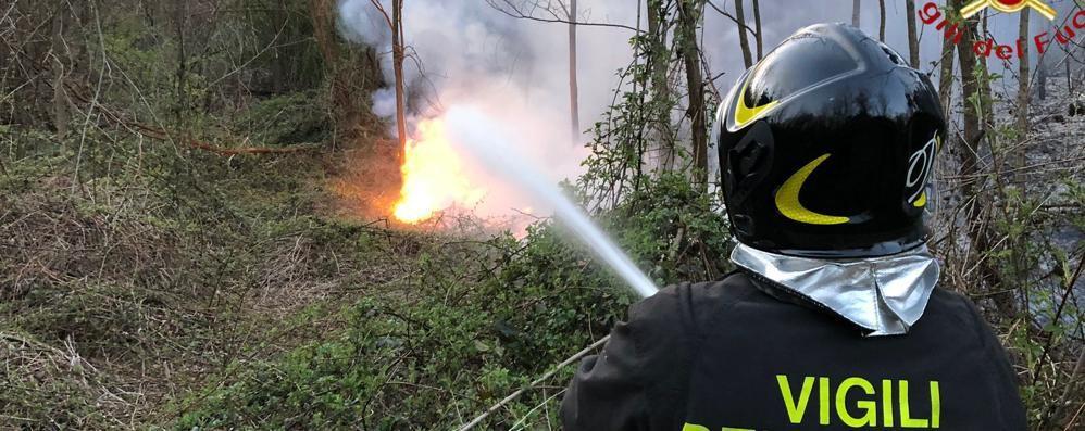 Incendio nei boschi a Caccivio  In fiamme mille metri quadrati