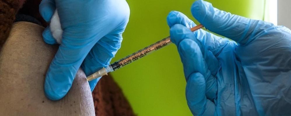 Vaccini, prima dose   a un comasco su cinque