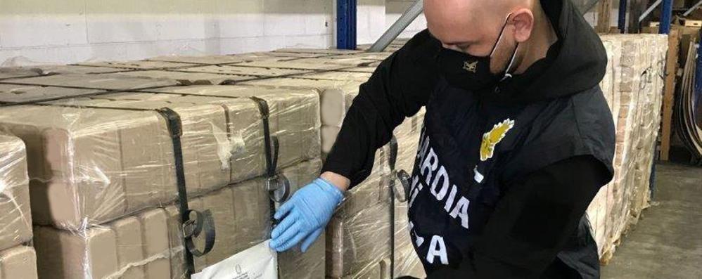 In azienda legna di origine sospetta  La Finanza sequestra 12 tonnellate