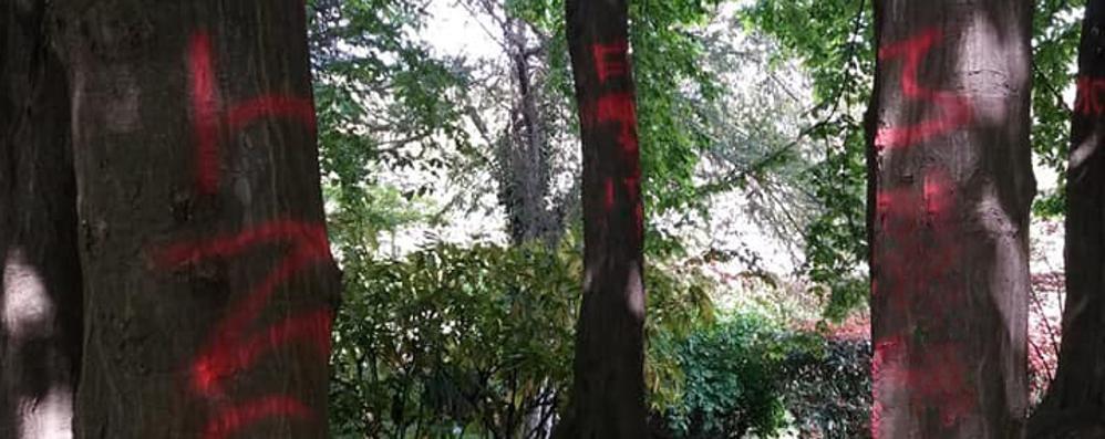 Montano, vandali al parco  Spray rosso sugli alberi