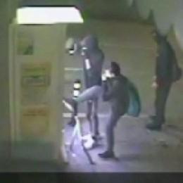 Ragazzina filma il raid degli amici  Individuati cinque giovani vandali