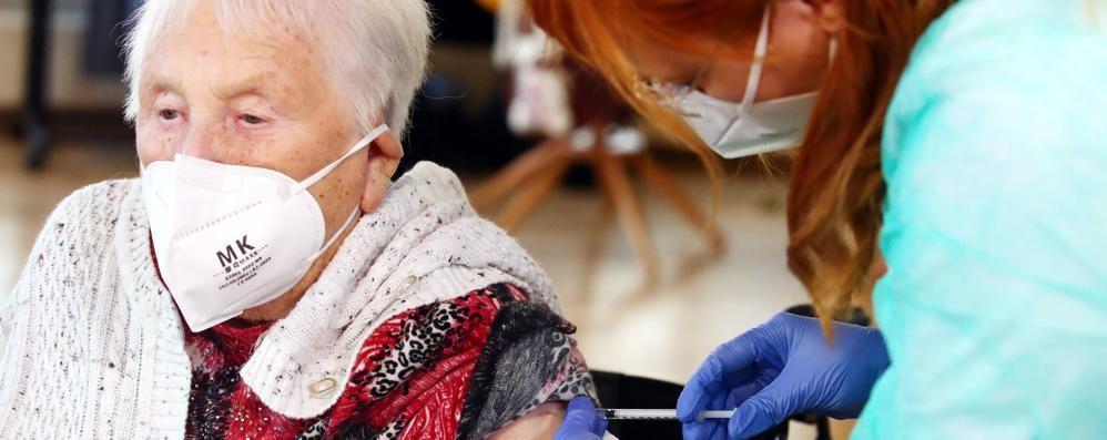 I vaccini a Como  Oltre 200 le vite   salvate dal Covid