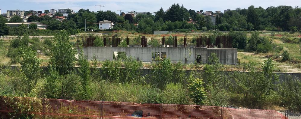 Palazzetto dello sport a Cantù  Il progetto definitivo in due mesi