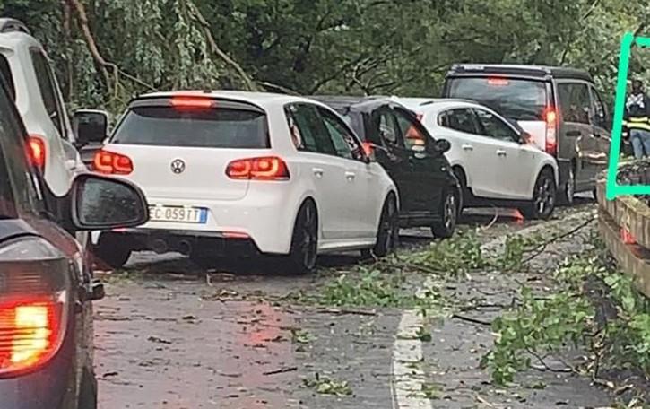 Sorico, vento a 118 km e temporale  Alberi in carreggiata, Regina chiusa