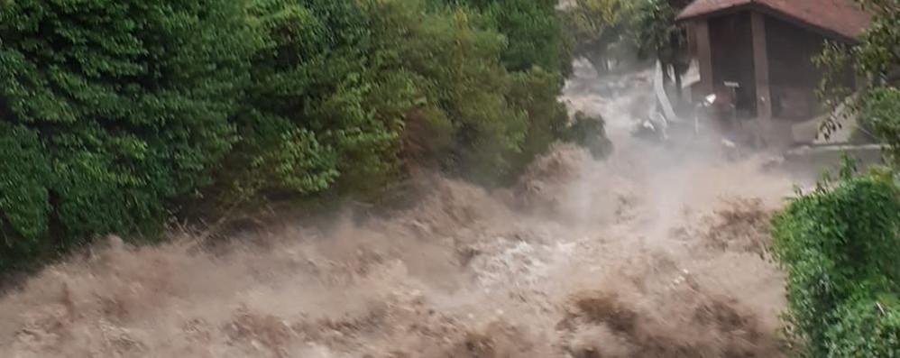 Casa distrutta dal fiume di fango  «Ho salvato solo i miei animali»