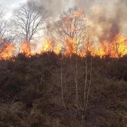 Garzeno, distrutti bosco e pascolo  Multa di 4 milioni e richiesta di processo