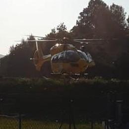 Zelbio, punto da un calabrone  In elicottero al Sant'Anna