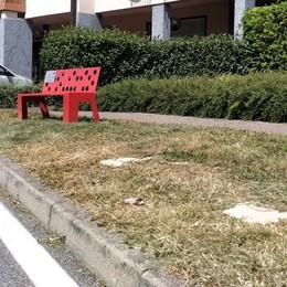 Mariano, rimuovono la panchina rossa  Caccia ai vandali con le telecamere